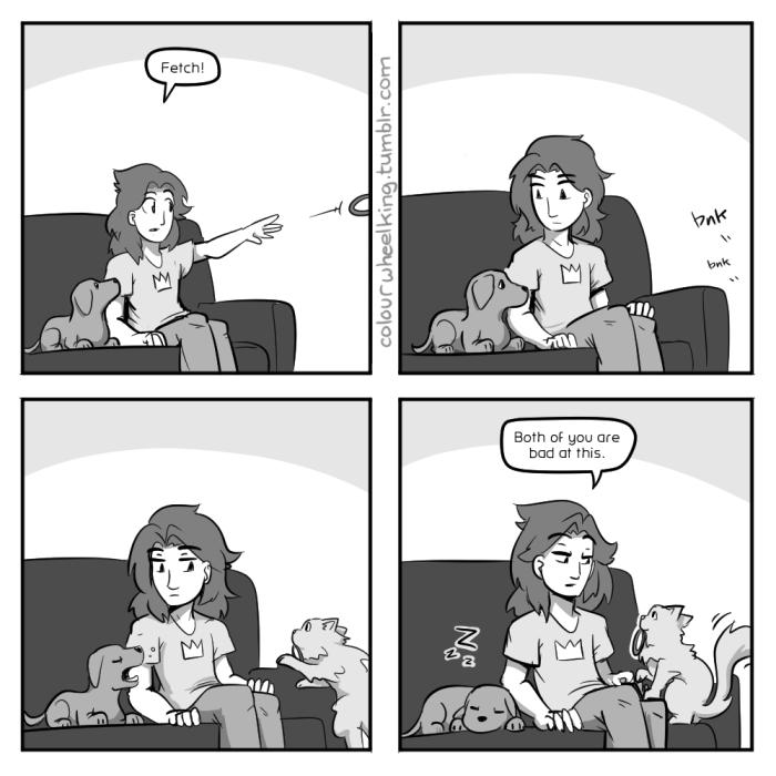 He's a very nice cat.